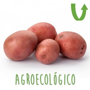 Papa 1 Kg AgroEcologicas