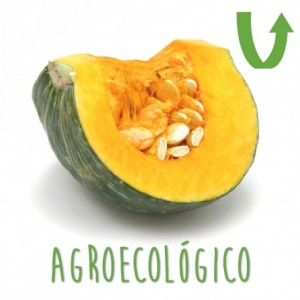 Zapallo Camote Trozo AgroEcologico (800Gr Aprox.)